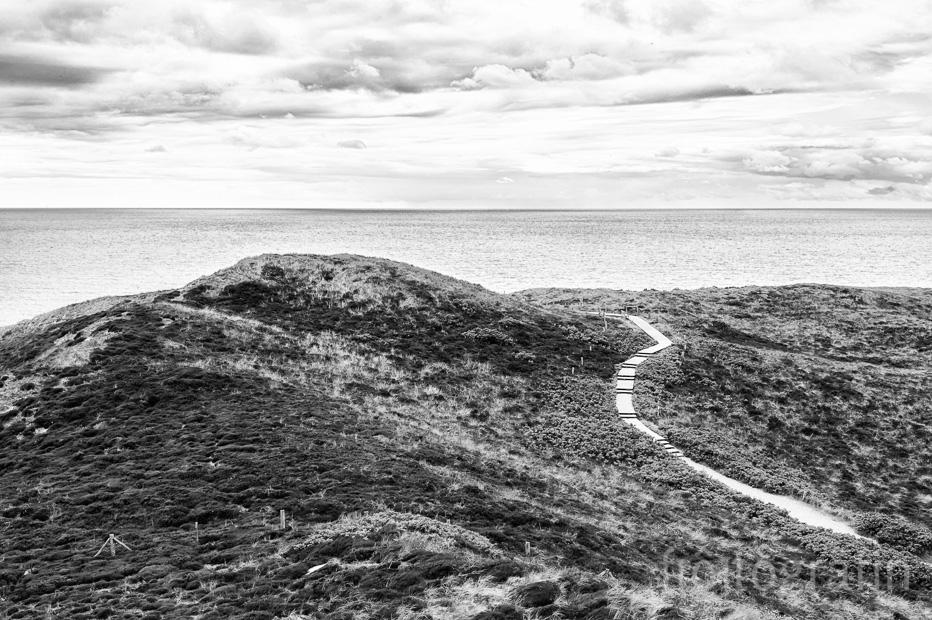 Sylt Fotografie Landschaft fotogräfin