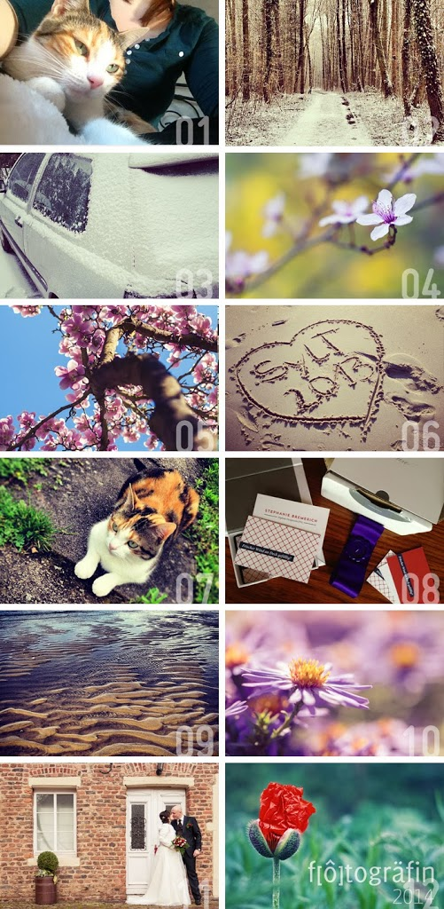 Jahr in Bildern 2013 fotogräfin